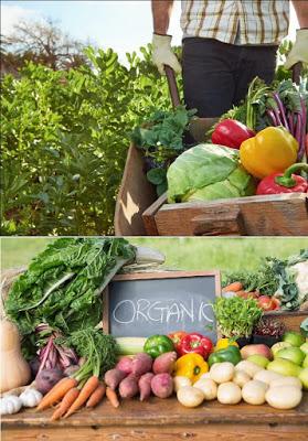 Продукти на органично земеделие
